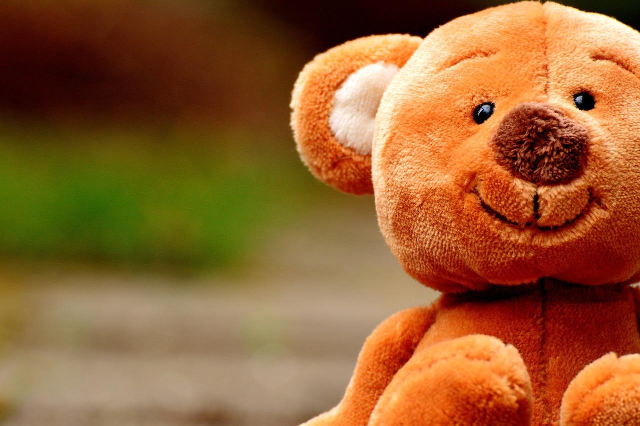 Když potkáš medvěda_nedělej nic